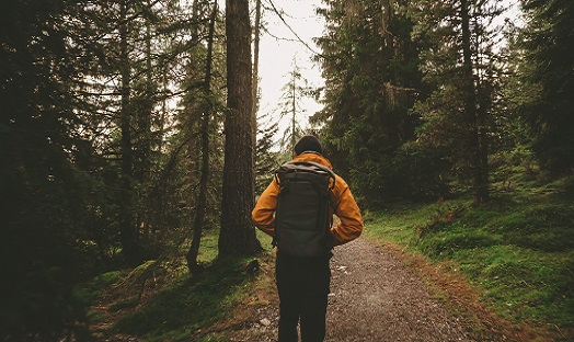 man walking through pine forest alone, in yellow coat